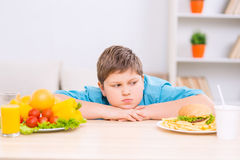 Chubby boy is looking at junk food plate Stock Image