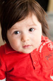 Chubby boy potrait. Portrait of a chubby baby boy Royalty Free Stock Image