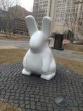 Chubby Bunny Royalty-vrije Stock Foto