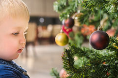 Chubby male child behind Christmas tree Royalty Free Stock Images
