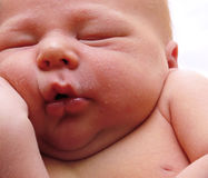 Chubby newborn infant Royalty Free Stock Photos
