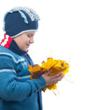Chubby teenage boy holds bunch of autumn leaves Stock Images