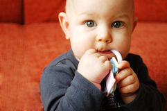 Chubby Toddler. A chubby toddler boy with a sucker in his mouth Royalty Free Stock Photo