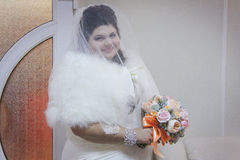 Chubby young bride posing Stock Images