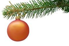 Chuchería anaranjada de la Navidad y una rama spruce Fotografía de archivo