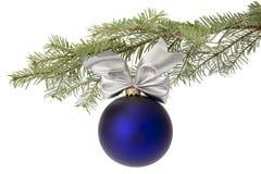 Chuchería azul de la Navidad en la ramificación de árbol Foto de archivo