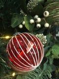 Chuchería de cristal roja y blanca del ornamento del árbol de navidad en un árbol Fotos de archivo