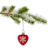 Chuchería de la Navidad en rama de árbol nevada. Fotos de archivo