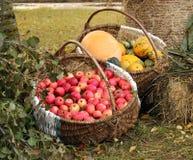 Chucherías del jardín del otoño Fotografía de archivo