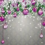 Chucherías púrpuras congeladas la Navidad Grey Ornaments de las ramitas verdes del abeto libre illustration