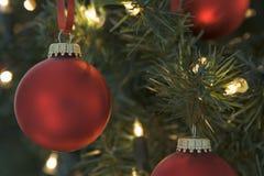 Chucherías rojas de la Navidad en árbol Fotos de archivo libres de regalías