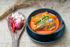 Chuchi鲭鱼泰国食物 免版税库存图片