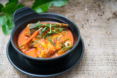 Chuchi鲭鱼泰国食物 免版税库存照片