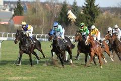 chuchle Derby koński Prague biegowy target1372_0_ Fotografia Royalty Free