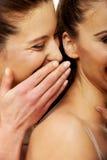 Chuchotement de deux femmes de beauté Photos stock