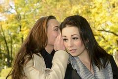 Chuchotement de soeurs Images stock