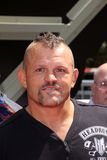 Chuck Liddell  Stock Images