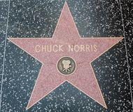 Chuck Norris Hollywood Star arkivfoto