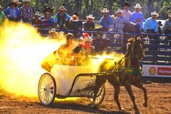 Chuck Wagon Race. At a Rodeo Festival, we assist to a special roman style chuck wagon race Stock Photography