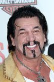 Chuck Zito Royalty Free Stock Photography