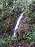 Chuckanut Falls Stock Images