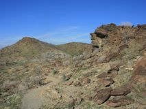 Chuckwalla Trail3 Royaltyfri Foto
