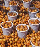 Chufa nuts Irrigated With Water Stock. Spain Royalty Free Stock Images