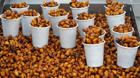 Chufa nuts Irrigated With Water Stock. Spain Royalty Free Stock Photo