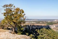 Chufut-grönkål Medeltida stad-fästning i det Crimean royaltyfria foton