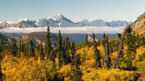 Chugach bergMatanuska River Valley Alaska Förenta staterna Arkivbilder