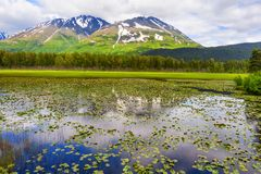 Chugach National Forest in Alaska. One of many scenic views along the Seward Highway in Chugach National Forest in Alaska. The mountains reflect in the pond of stock image