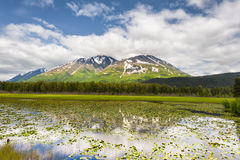 Chugach National Forest in Alaska. Scenic landscape of mountains reflecting in a pond, seen from Seward Highway in the Chugach National Forest in Alaska royalty free stock images