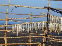 Chuim村庄Bandra孟买印度 免版税库存图片