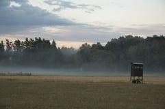 Chuje w mgle fotografia stock