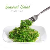 Chuka salad. Seaweed with sesame seeds on fark and ceramic plate, isolated on white. Japanese Cuisine Stock Photography