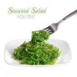 Chuka-Salat. Meerespflanze mit Samen des indischen Sesams auf dem fark und keramischer Platte, lokalisiert auf Weiß. Japanische Kü Stockfotografie