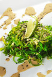 Chuka Seaweed Salad Stock Images