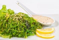 Chuka Seaweed Salad Stock Image