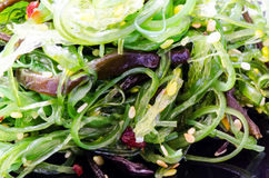 Chuka Seaweed Salad with sesame seeds Stock Photography
