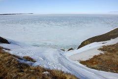 Chukotka. Oceano polare Fotografia Stock