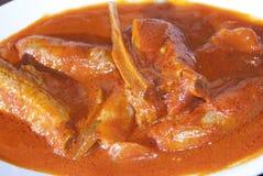 Chuleta y salchicha en salsa de tomate Fotografía de archivo libre de regalías