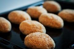 Chuletas hechas en casa Alimento sano Chuletas del pollo Fotos de archivo
