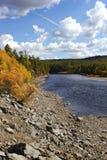 Chulman flod i södra Yakutia Royaltyfri Fotografi