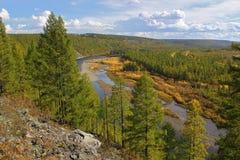 Chulman flod i södra Yakutia, i den tidiga nedgången Royaltyfri Fotografi