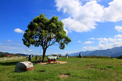 Chulu Ranch,Taitung,Taiwan. Stock Images