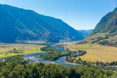 Chulyshman河谷, Ulagansky区,阿尔泰共和国,俄罗斯的全景 库存照片