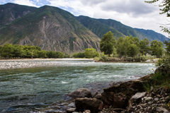 Chulyshman river. Chulyshman river not far from the place, where Chulcha river flows into it. Altai republic Royalty Free Stock Photos