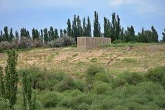 Chunche nella lingua del Uighur usata per l'uva passa di secchezza costruita nell'alta e regione ventosa della natura di Turpan n Immagini Stock Libere da Diritti