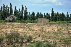 Chunche nella lingua del Uighur usata per l'uva passa di secchezza costruita nell'alta e regione ventosa della natura di Turpan n Fotografie Stock