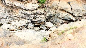 Rocks in Chunchi Falls near Bangalore stock photography